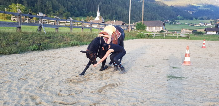 Natural-Horsemanship-horse-around,gerda-beer,pferdetraining, reitunterricht, reitpädagogik, kinderreiten