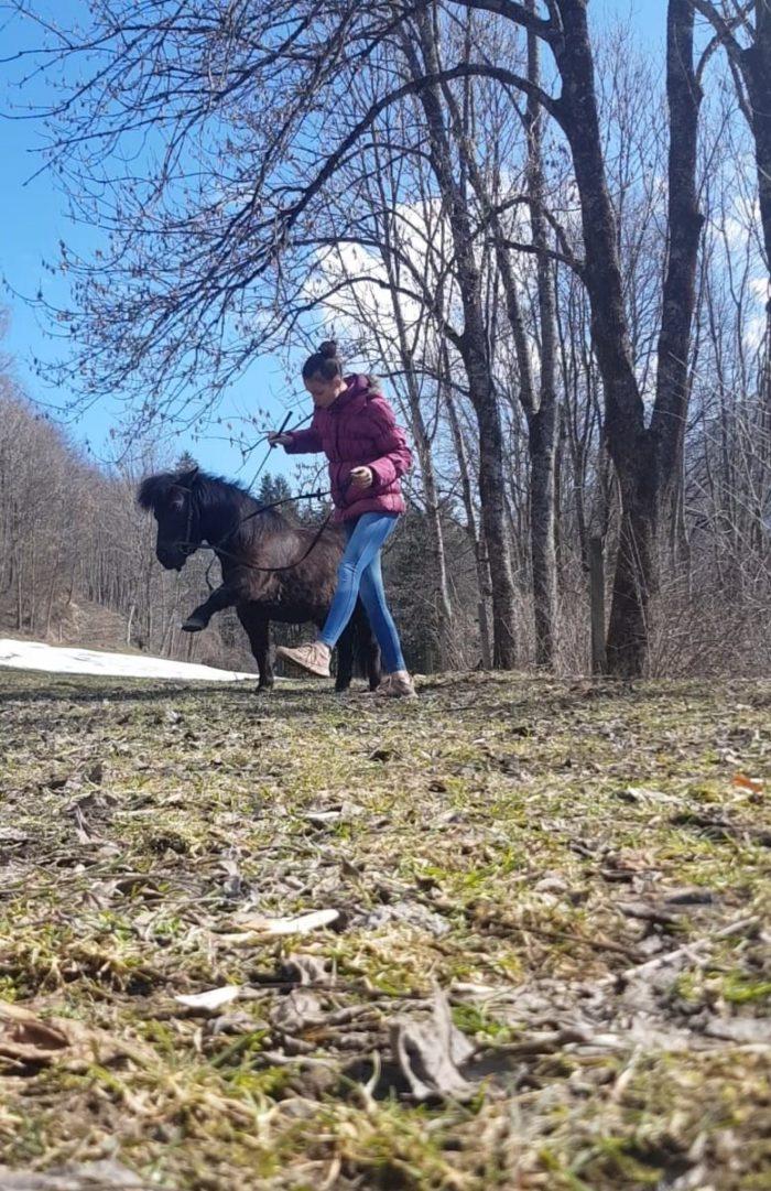 Natural-Horsemanship-horse-around,gerda-beer,pferdetraining, kinderreitunterricht, reitpädgogik